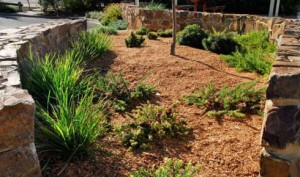 Greeley Flower Garden Mulch Landscaping Services Buffalo